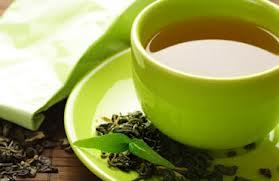 Tea harvard